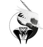 Wing Gym Logo